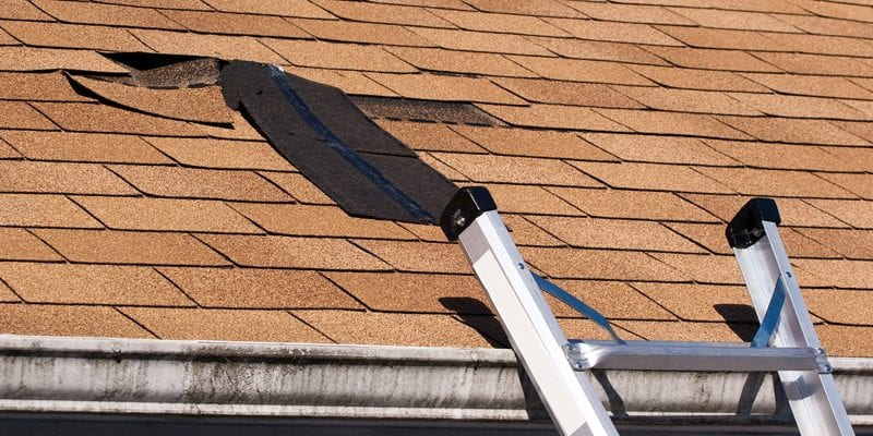 early signs a roof replacement is needed
